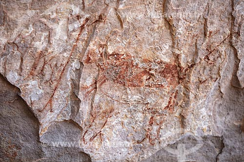 Detalhe de pintura rupestre - figura de animais e pessoas - no Sítio Arqueológico Toca do Vento - Parque Nacional Serra da Capivara  - São Raimundo Nonato - Piauí (PI) - Brasil