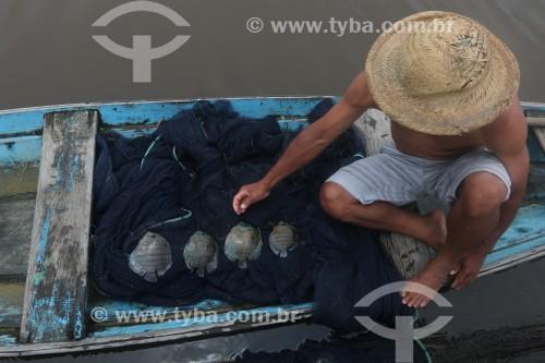 Pesca de Acará-Disco Hekel (Symphysodon discus) - Reserva de Desenvolvimento Sustentável Piagaçu-Purus - Beruri - Amazonas (AM) - Brasil