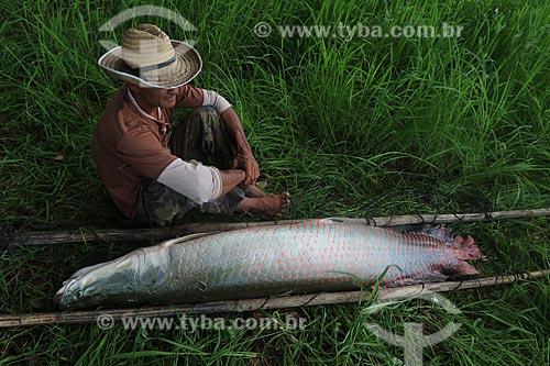 Pescador carregando Pirarucu (Arapaima gigas) - Reserva de Desenvolvimento Sustentável Piagaçu-Purus  - Beruri - Amazonas (AM) - Brasil