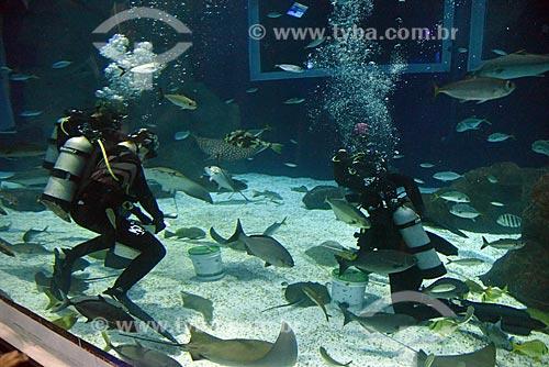Mergulhadores alimentando os peixes no AquaRio - aquário marinho da cidade do Rio de Janeiro  - Rio de Janeiro - Rio de Janeiro (RJ) - Brasil