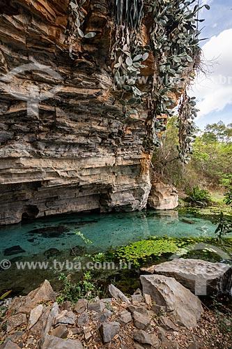 Rio de água azul na Gruta da Pratinha  - Iraquara - Bahia (BA) - Brasil
