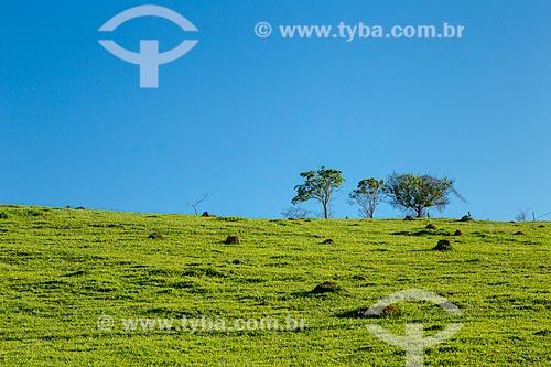 Detalhe de paisagem rural  - Guarani - Minas Gerais (MG) - Brasil