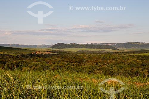 Paisagem com canavial e vegetação remanescente de cerrado - com cuesta da serra de Itaqueri ao fundo  - Santa Maria da Serra - São Paulo (SP) - Brasil