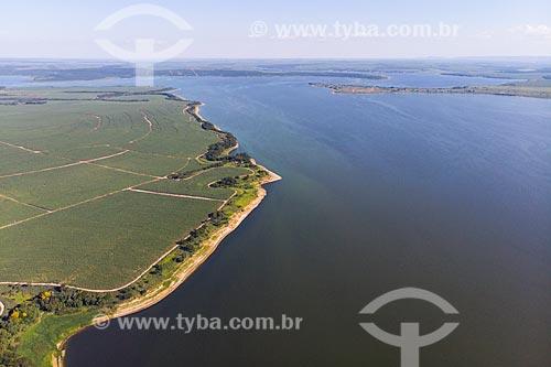 Vista de drone de canavial e da foz do Rio Piracicaba no Rio Tietê  - Mineiros do Tietê - São Paulo (SP) - Brasil