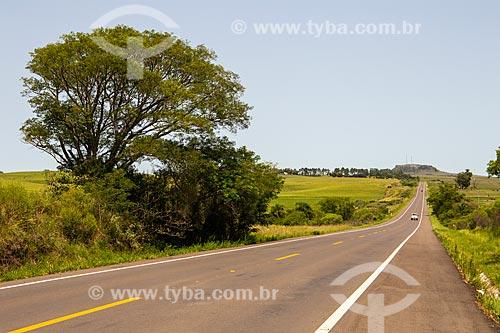 Rodovia BR-293 com cerro Tarumã ao fundo  - Santana do Livramento - Rio Grande do Sul (RS) - Brasil