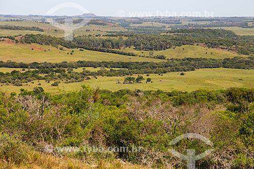 Paisagem de coxilhas dos campos sulinos - Área de Proteção Ambiental do Ibirapuitã  - Santana do Livramento - Rio Grande do Sul (RS) - Brasil