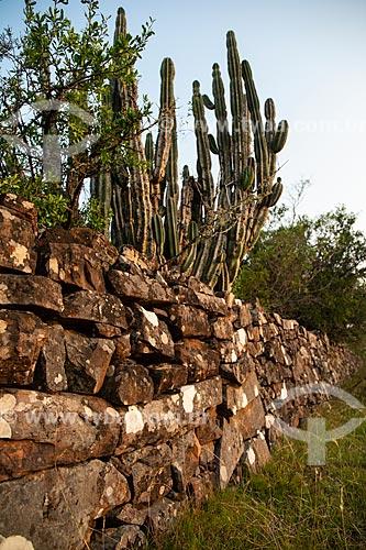 Muro de pedra usado como cerca dividindo propriedade rural  - Santana do Livramento - Rio Grande do Sul (RS) - Brasil