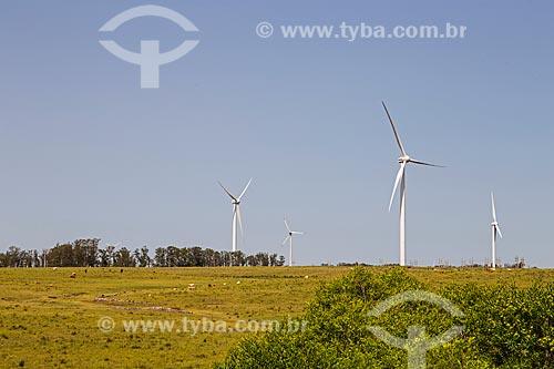 Aerogeradores da usina eólica Cerro Chato  - Santana do Livramento - Rio Grande do Sul (RS) - Brasil