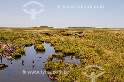 Arroio nos campos sulinos  - Quaraí - Rio Grande do Sul (RS) - Brasil
