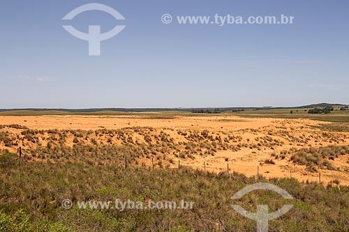 Vista aérea de pasto nativo em processo de arenização nos campos sulinos  - Quaraí - Rio Grande do Sul (RS) - Brasil