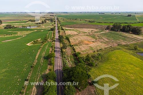Foto feita com drone da Rodovia BR-290 em meio a plantação de Soja no pampa gaúcho  - Rosário do Sul - Rio Grande do Sul (RS) - Brasil