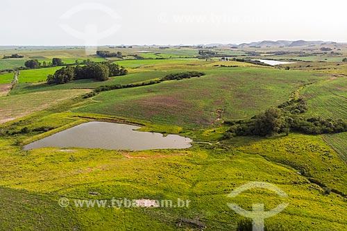 Foto feita com drone de paisagem rural e plantação de Soja no pampa gaúcho  - Rosário do Sul - Rio Grande do Sul (RS) - Brasil