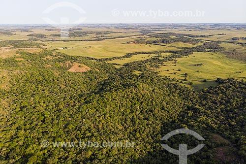 Foto feita com drone de paisagem de coxilhas dos campos sulinos - Área de Proteção Ambiental do Ibirapuitã  - Santana do Livramento - Rio Grande do Sul (RS) - Brasil