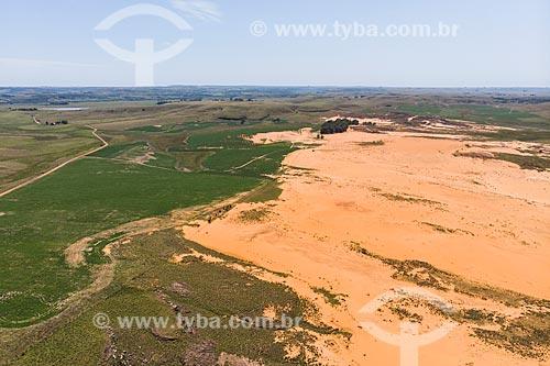 Foto feita com drone de pasto nativo em processo de arenização nos campos sulinos  - Quaraí - Rio Grande do Sul (RS) - Brasil