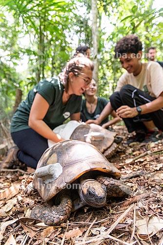 Equipe de biólogos trabalhando no projeto de biologia da Tartaruga de pés amarelos na Floresta da Tijuca  - Rio de Janeiro - Rio de Janeiro (RJ) - Brasil