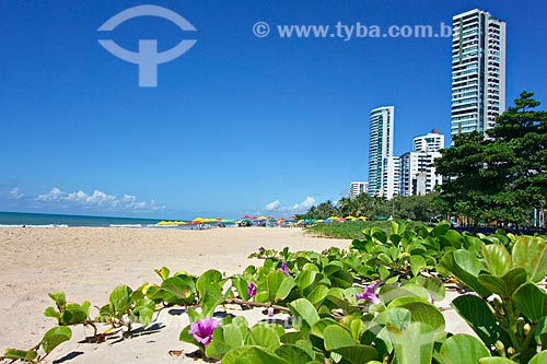 Praia da Boa Viagem  - Recife - Pernambuco (PE) - Brasil