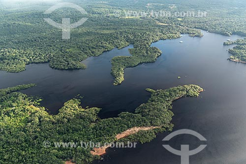 Vista aérea da floresta amazônica inundada  - Manaus - Amazonas (AM) - Brasil