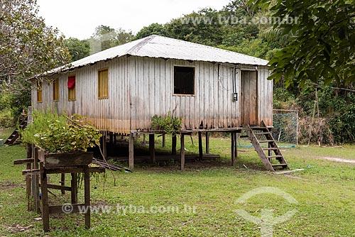 Horta elevada para proteger de inundação de rio  - Amazonas (AM)