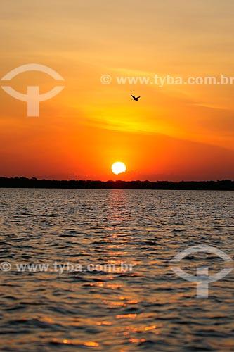 Pôr do Sol no Pantanal  - Poconé - Mato Grosso (MT) - Brasil
