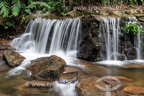 Detalhe da Cascatinha Taunay no Parque Nacional da Tijuca  - Rio de Janeiro - Rio de Janeiro (RJ) - Brasil