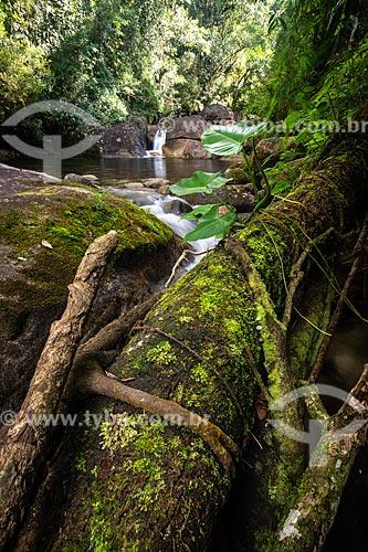 Poço Pirapetinga no Área de Proteção Ambiental da Serrinha do Alambari  - Resende - Rio de Janeiro (RJ) - Brasil