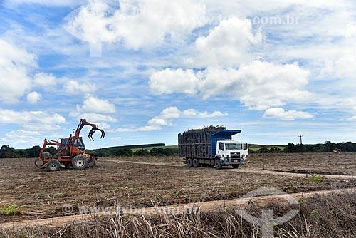 Caminhão carregado de cana-de-açúcar após colheita  - Belmonte - Bahia (BA) - Brasil