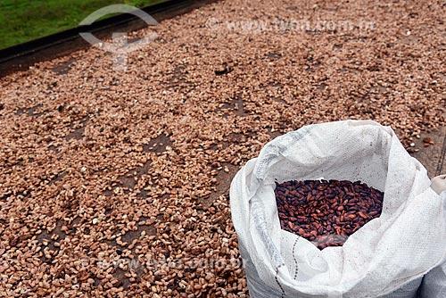 Detalhe de grãos de cacau na barcaça - processo de secagem tradicional e natural  - Belmonte - Bahia (BA) - Brasil