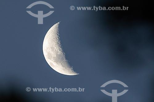 Detalhe de lua na Área de Proteção Ambiental da Serrinha do Alambari  - Resende - Rio de Janeiro (RJ) - Brasil
