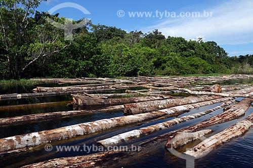 Toras de madeira ilegal como Samaúma, Cedro, Mogno, Itaúba, Assaçu, entre outras apreendidas na Comunidade Santo Antônio. As toras são advindas da Reserva de Desenvolvimento Sustentável (RDS) do Piranha e da RDS do Piagaçú-Purús  - Manacapuru - Amazonas (AM) - Brasil
