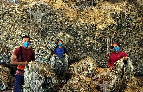 Trabalhadores trabalhando com Juta  - Manacapuru - Amazonas (AM) - Brasil