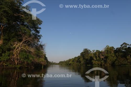 Vista do Rio Ariaú - Iranduba - Amazonas (AM) - Brasil