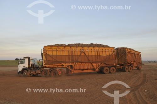 Caminhão carregado de cana-de-açúcar após colheita mecanizada - Potirendaba - São Paulo (SP) - Brasil