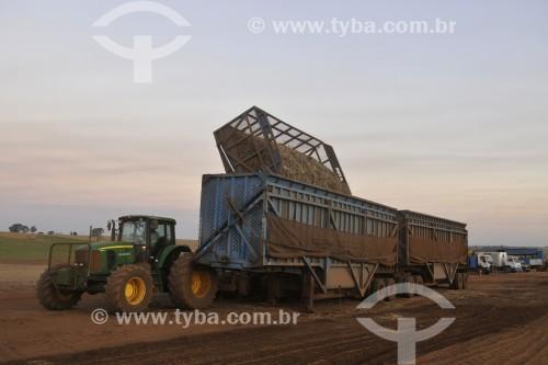 Descarregamento de cana-de-açúcar em carreta após colheita mecanizada - Potirendaba - São Paulo (SP) - Brasil