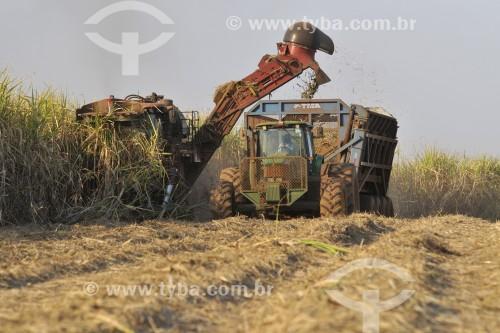 Colheita mecanizada de cana-de-açúcar - Potirendaba - São Paulo (SP) - Brasil