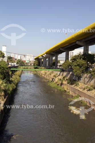 Rio Tamanduateí - São Paulo - São Paulo (SP) - Brasil