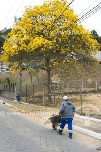 Gari do serviço de limpeza pública - Santa Maria de Jetibá - Espírito Santo (ES) - Brasil