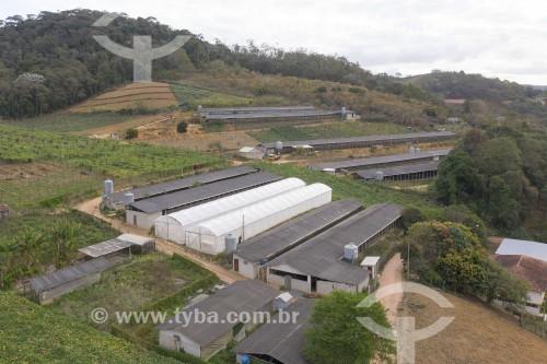 Foto feita com drone de granja de postura na zona rural - o municipio é o maior produtor de ovos do Brasil - Santa Maria de Jetibá - Espírito Santo (ES) - Brasil