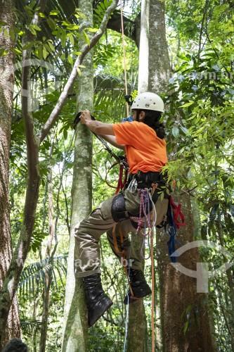 Homem fazendo manutenção de armadilha fotográfica no topo de árvore - Parque Nacional da Tijuca - Rio de Janeiro - Rio de Janeiro (RJ) - Brasil