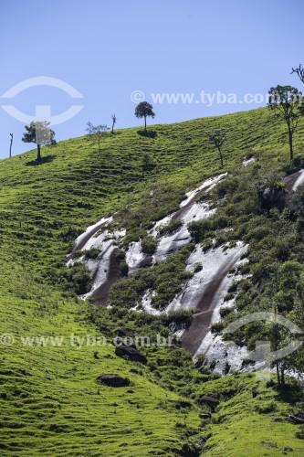 Nascentes de água brotando de rocha no alto de montanha da Serra da Mantiqueira - São José dos Campos - São Paulo (SP) - Brasil