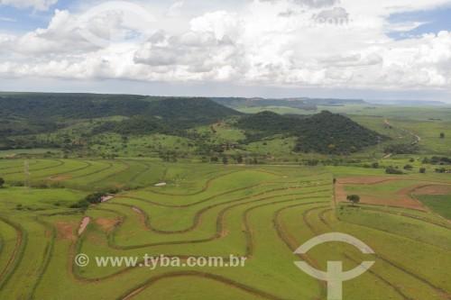 Foto feita com drone de canavial e pasto com cuestas ao fundo - Barra Bonita - São Paulo (SP) - Brasil