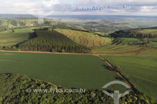 Foto feita com drone de plantação de Soja no alto da cuesta da serra de Itaqueri - Torrinha - São Paulo (SP) - Brasil