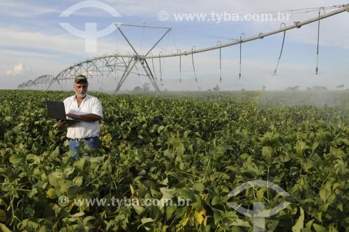 Agricultor utilizando computador no campo em meio a plantação de soja - Buritama - São Paulo (SP) - Brasil