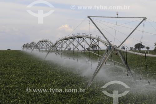 Irrigação em Plantação de Soja - Buritama - São Paulo (SP) - Brasil