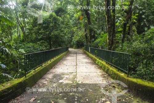 Ponte na Floresta da Tijuca - Rio de Janeiro - Rio de Janeiro (RJ) - Brasil