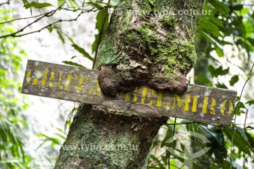 Detalhe de placa na Gruta do Belmiro no Parque Nacional da Tijuca  - Rio de Janeiro - Rio de Janeiro (RJ) - Brasil