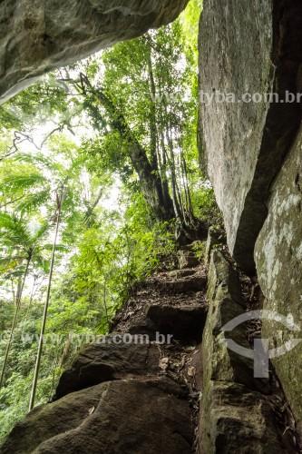 Gruta do Belmiro no Parque Nacional da Tijuca  - Rio de Janeiro - Rio de Janeiro (RJ) - Brasil