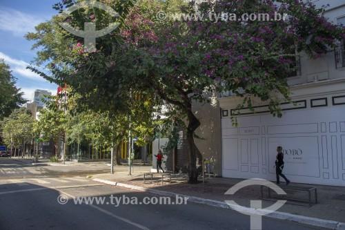 Lojas de luxo na Rua Oscar Freire fechadas devido a quarentena imposta pelo Covid-19 - São Paulo - São Paulo (SP) - Brasil