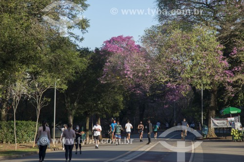 Reabertura do Parque do Ibirapuera após período de quarentena devido à crise do Coronavírus - São Paulo - São Paulo (SP) - Brasil