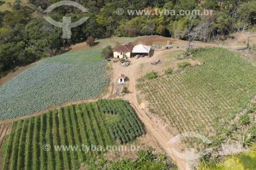 Foto feita com drone de horta em pequena propriedade rural - Brasópolis - Minas Gerais (MG) - Brasil