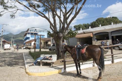 Cavalo de passeio amarrado em praça - Brasópolis - Minas Gerais (MG) - Brasil